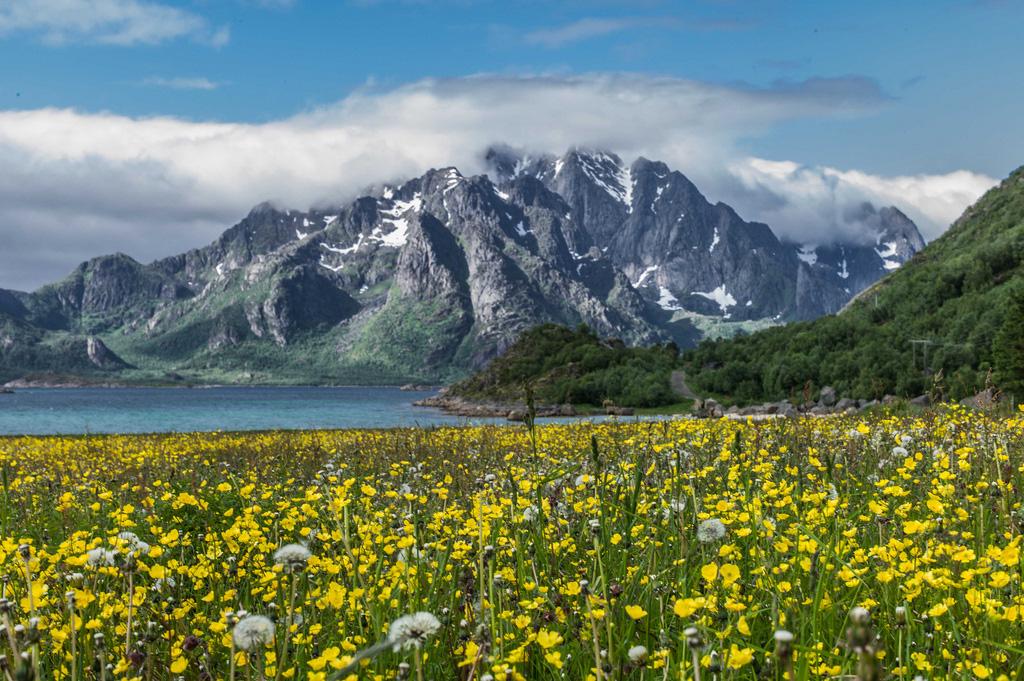 Лофотенские острова в Норвегии, фото 4