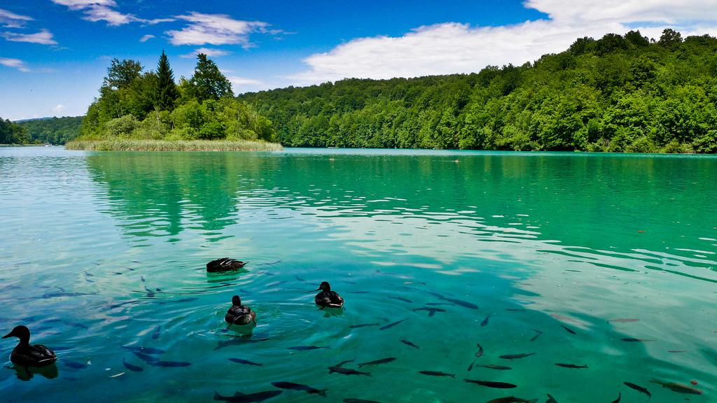 Плитвицкие озера в Хорватии, фото 4