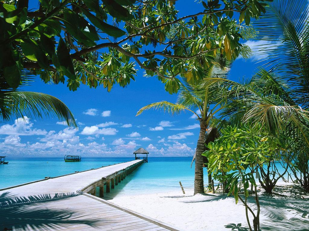 Пляж Атолла Ари на Мальдивах, фото 4