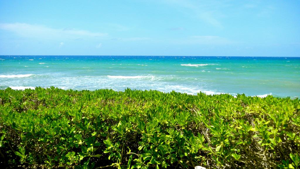 Пляж Монтего-Бэй на Ямайке, фото 1
