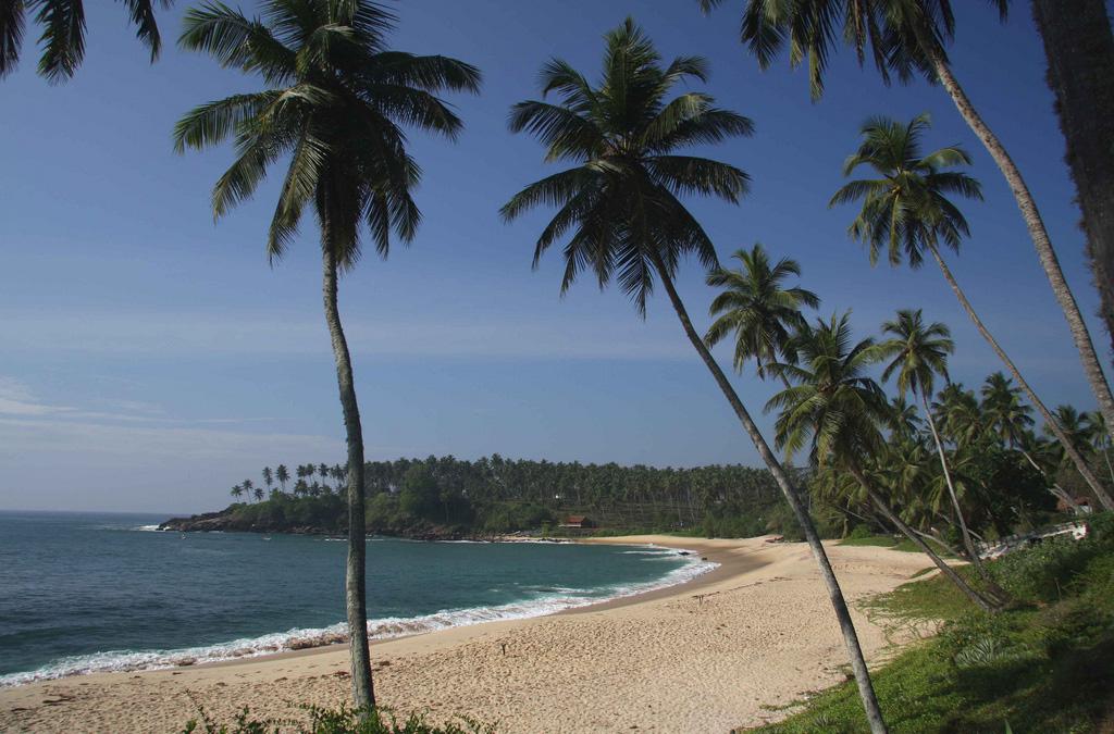 Пляж Тангалла в Шри-Ланке, фото 6