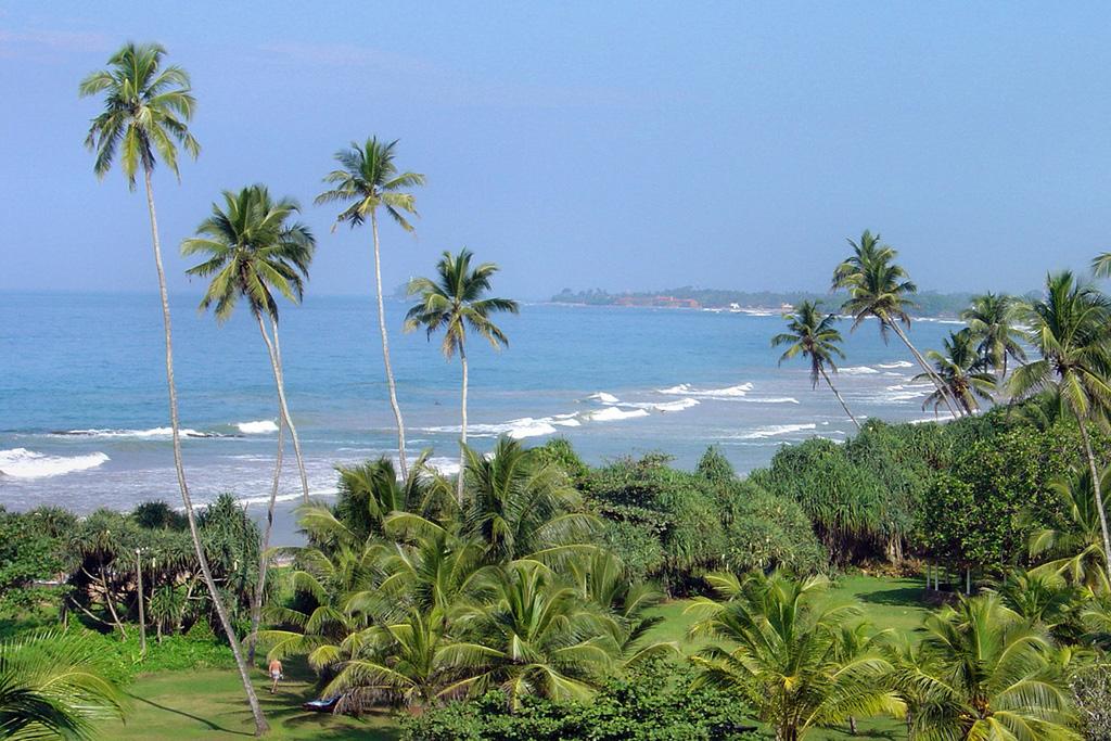 Пляж Тангалла в Шри-Ланке, фото 7
